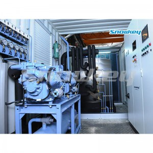 Containerized Flake Ice Machine Unit