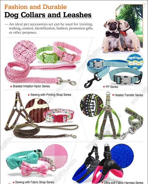 Durable Dog Leashes & Collars