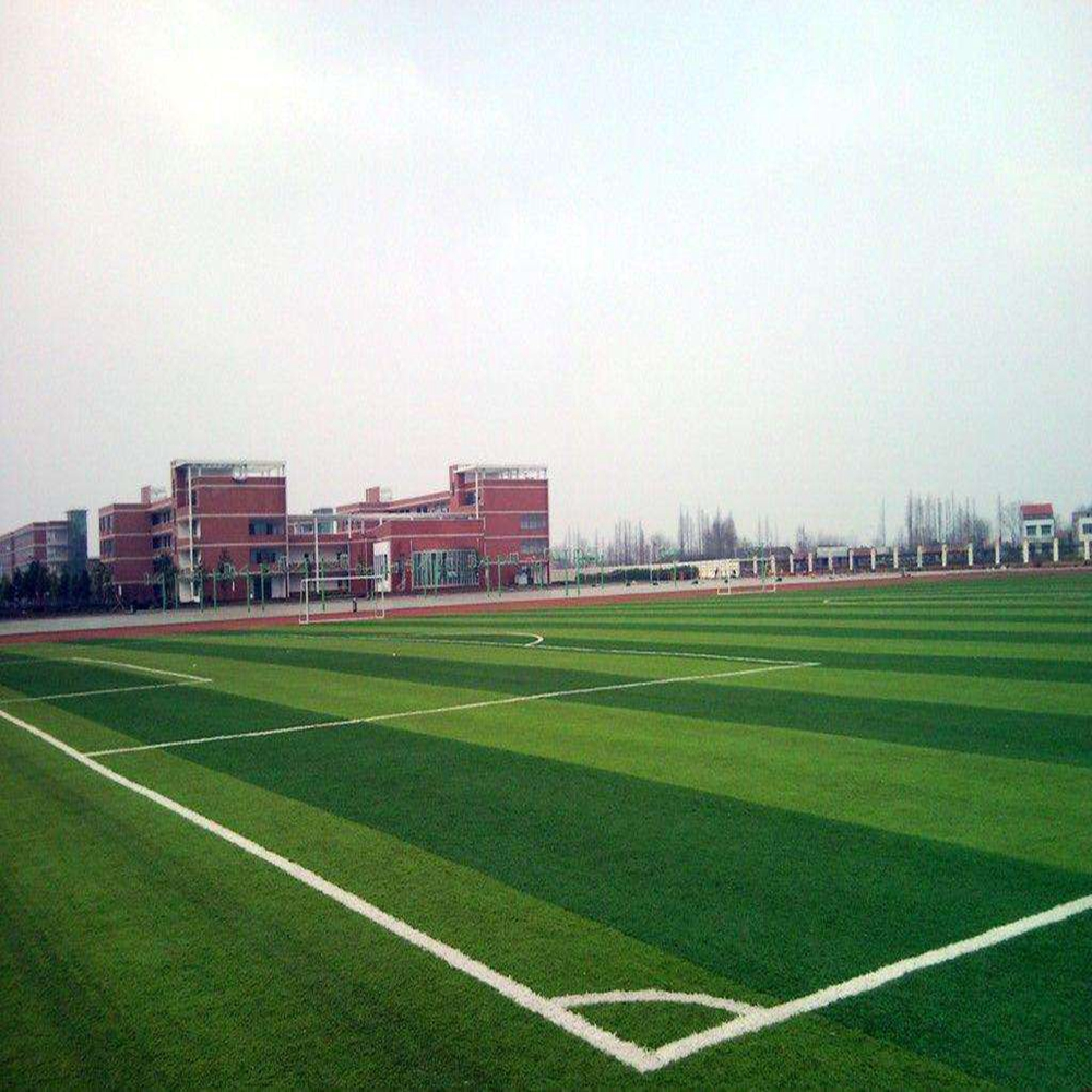 Hot sale free sample green 50 mm football field synthetic grass carpet