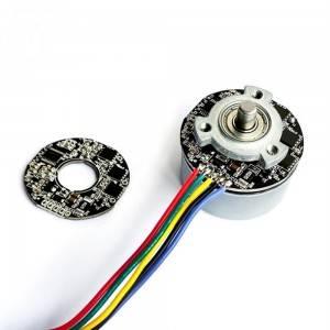 BL5520筋膜枪BLDC电机主体按摩器高扭矩低RPM 24V直流无刷直流电机
