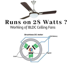 Brushless DC Motor and Fan Blade Units for Electric Fans