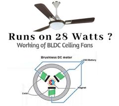用于电风扇的无刷直流电机和风扇叶片单元
