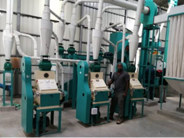 Tehold Maize Mill Machine