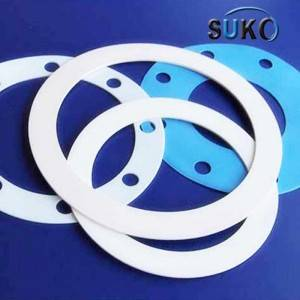 PTFE Lined Pipe Gasket