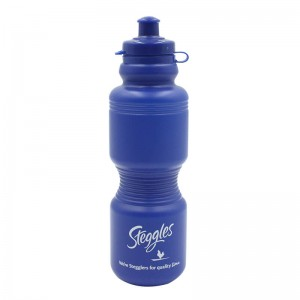 Sports Water Bottles, Reusable No BPA Plastic, Pull Top Leak Proof Drink Spout, DIY Customization for Business Branding, Fundraises, for Fitness