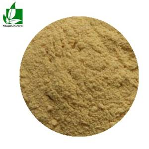 White willow bark P.E Salicin 25%