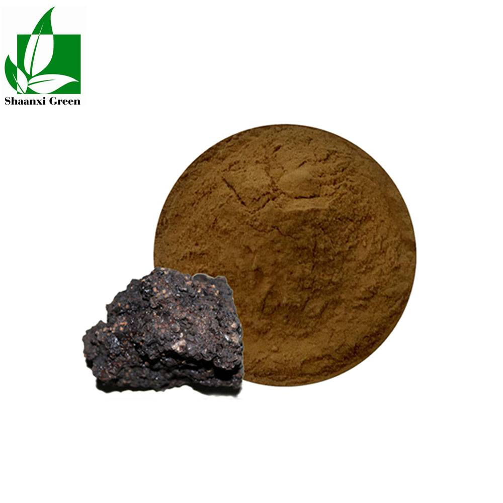 Shilajit extract Featured Image