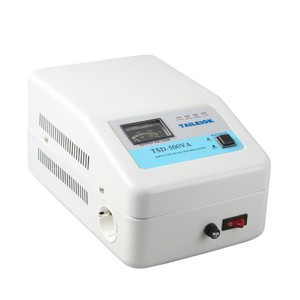 TSDL Wall hanging  servo AC voltage stabilizer