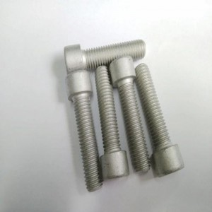 Hot dip galvanized hexagon socket head bolt