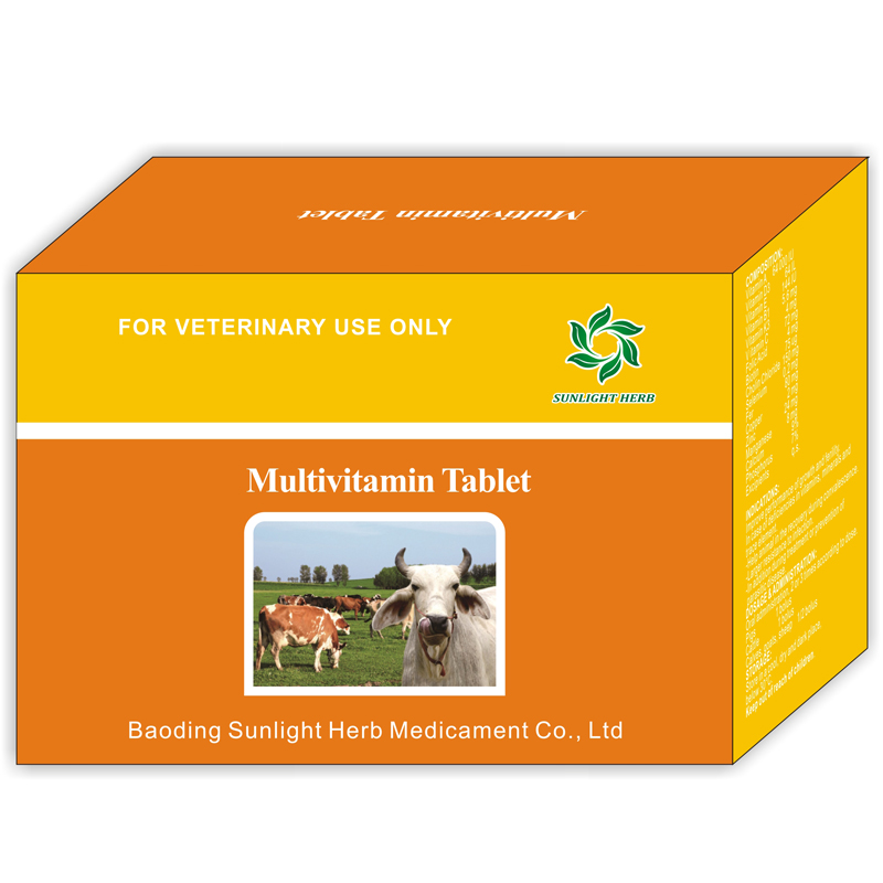 Multivitamin Tablet Featured Image