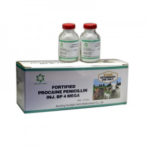 Fortified Procaine Benzylpenicillin For Injecti