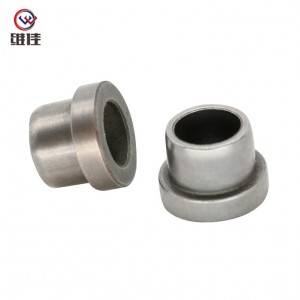 Bearing Made of Fe