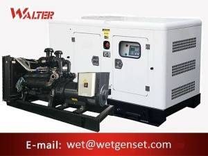 Shangchai engine diesel generator Supplier