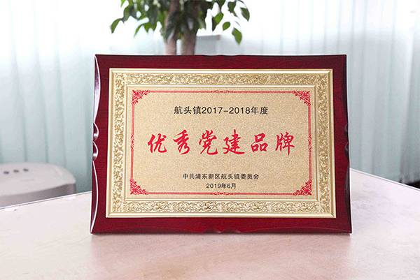 "The party branch of Weyer Electric won the outstanding party building brand  in Hangtou Town with its ""love first line, love filled Weyer"" activity"
