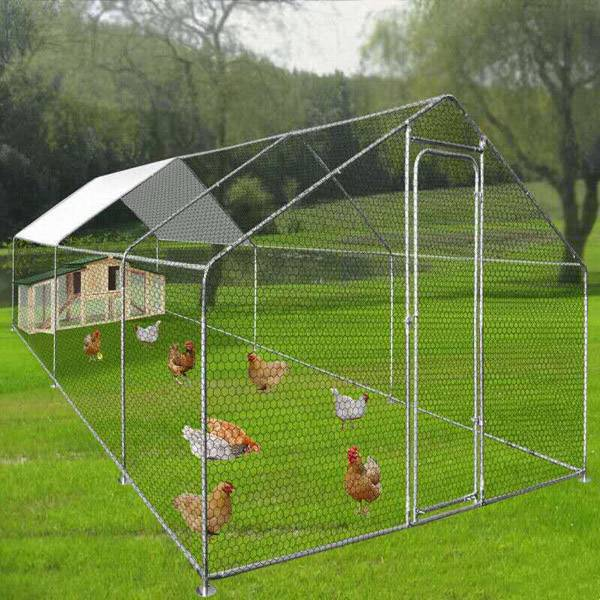 Large Metal Cages Chicken Run Coop Walk In Enclosure Rabbit Ducks Hen Poultry House 6x3x2m Featured Image