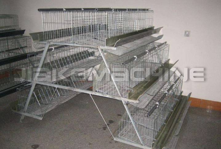 How to choose a breeding chicken cage net machine?