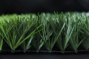 Eco-Spine football grass