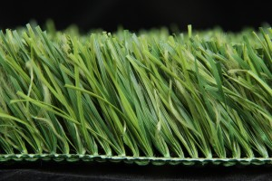 Diamond football grass