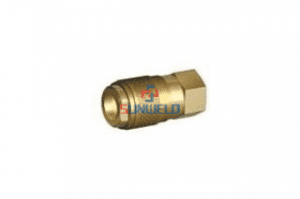 Good Wholesale Vendors 220931 - FA3066 Quick Connector 1/8G Internal Thread – Xinlian