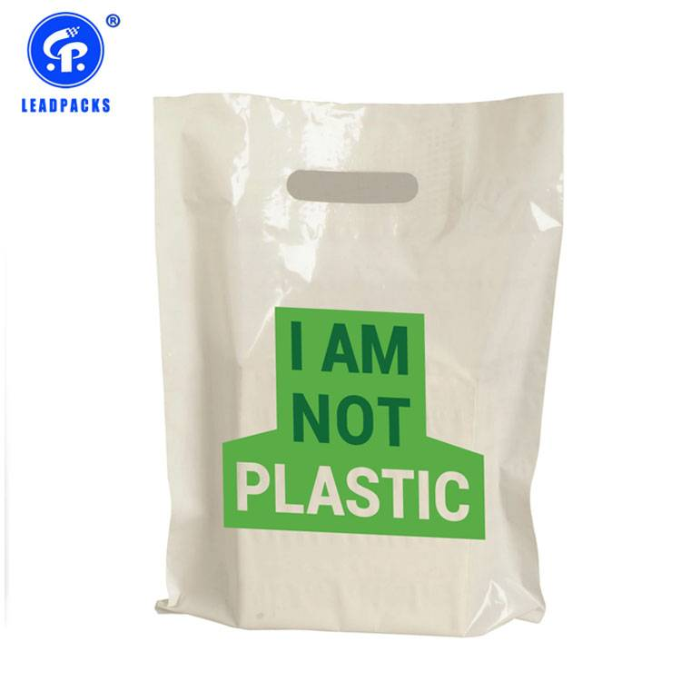 Compostable Shopping Bag Featured Image