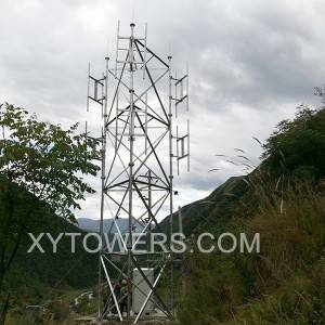 12m telecommunication tower inspection