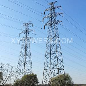 330kV double loop line tower
