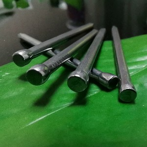 No Head Common Wire Nail Without Head Wire Nail Wood Finishing Nail