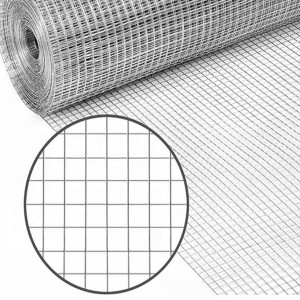 Galvanized /Stainless Steel /Welded Wire Mesh/ ...