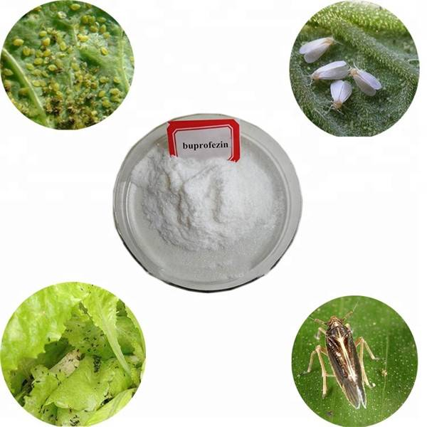 Factory Cheap Hot Fungicide - Insecticide Buprofezin 10%EC 25%SC 40%SC 50%SC 50%WG 25%WP 7%TC 70%WDG 70%WS 20%SL CAS 69327-76-0 – Awiner Biotech