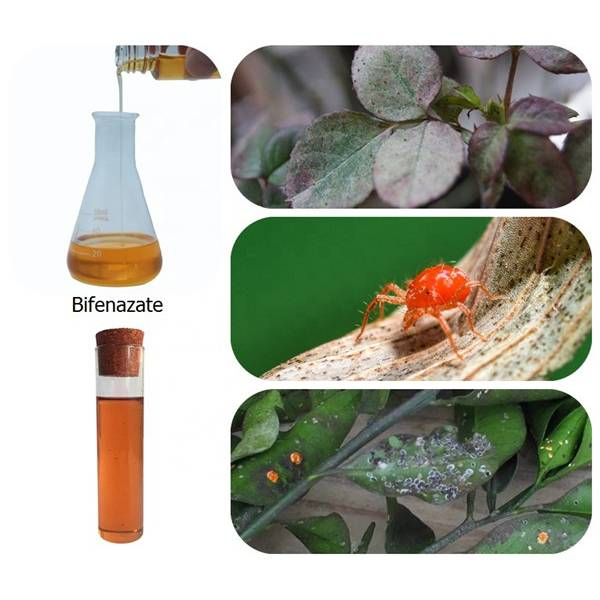 Leading Manufacturer for Paclobutrazol 25% SC - Insecticide Bifenazate 24%SC 99%TC 80%WP 5%GR 43%SC CAS 149877-41-8 – Awiner Biotech
