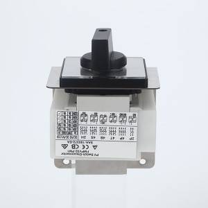 Panel Mounting PM1-2P Series DC Isolator Switch