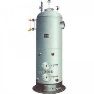 OEM Manufacturer Lpg Boiler - Vertical Wood /Coal Boiler – Double Rings