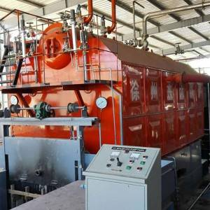 Top Suppliers China Oil Boiler - Wood Biomass Boiler – Double Rings