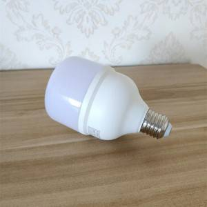 Wholesale Dealers of Blue Led Bulb - T bulb B Model – Aina