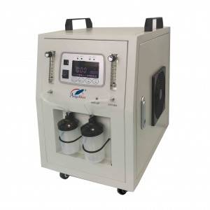China Wholesale Low Noise Oxygen Concentrator Manufacturers - Dual Flow O2 Concentrator ANGEL-10AD – AngelBiss