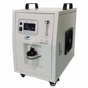 China Wholesale Low Noise Oxygen Concentrator Factory - 10LPM Oxygen Concentrator ANGEL-10S – AngelBiss