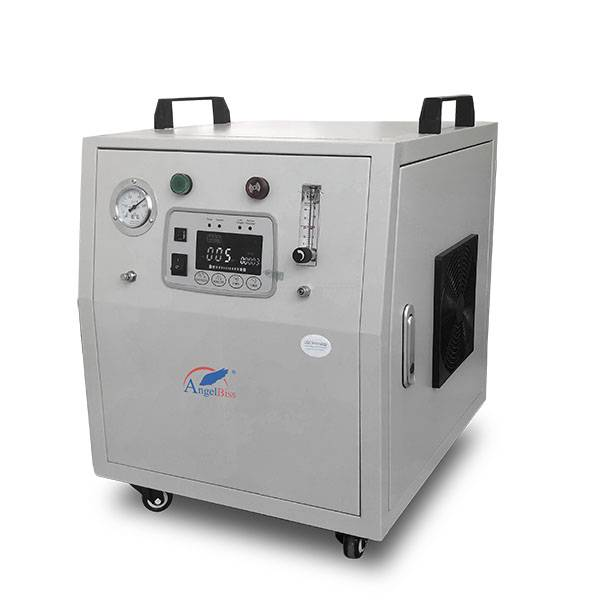 China Cheap price Therapeutic Apparatus Ozone Machine - Oxygen Generator Ozone – AngelBiss