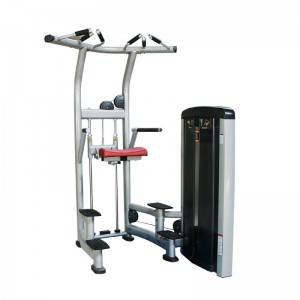 China wholesale Weight Lifting Rack - Commercial Assist Dip Chin BS-ANS-3008 – Baisheng