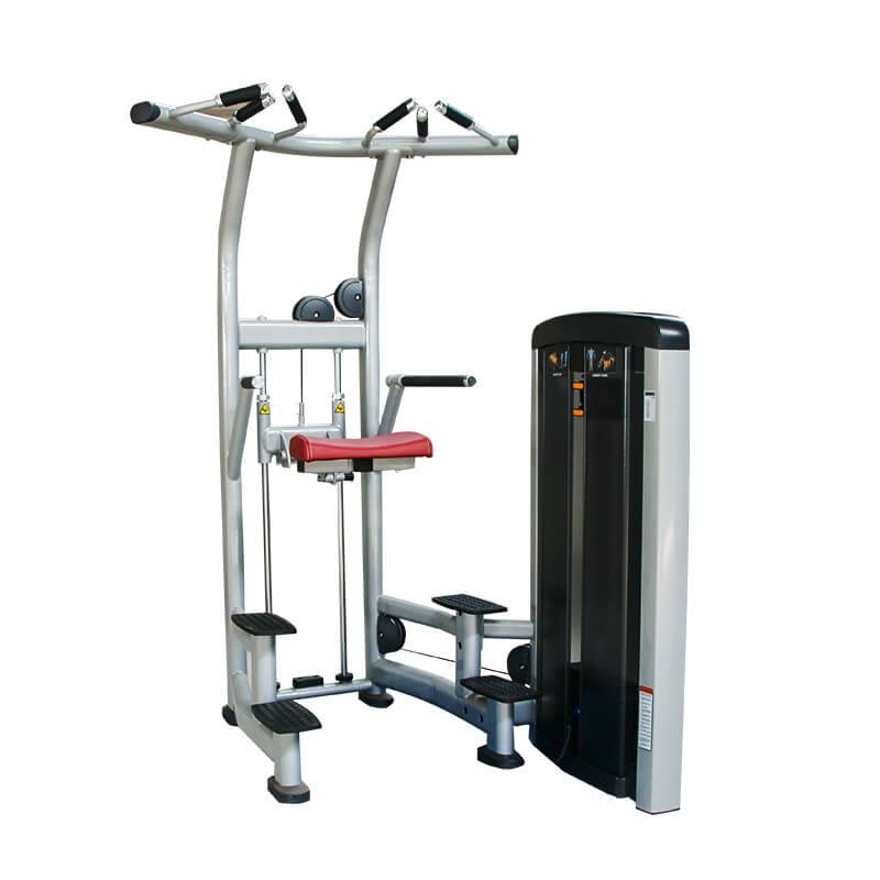 Wholesale Discount Fitness Machine - Commercial Assist Dip Chin BS-ANS-3008 – Baisheng