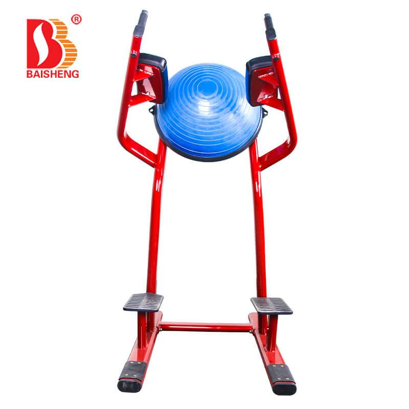 OEM/ODM Factory Fitness Machine - Leg Raise BS-ANS-3043 – Baisheng