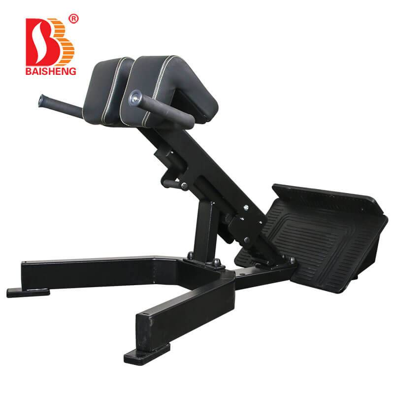 2019 High quality Tricep Press Machine - Back Extension BS-F-1041 – Baisheng