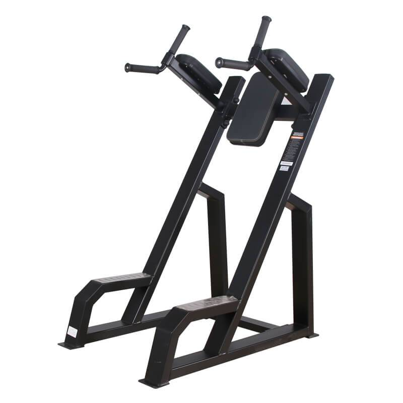 China Cheap price Flat Weight Bench - Leg Raise and Dip Station BS-F-1040 – Baisheng