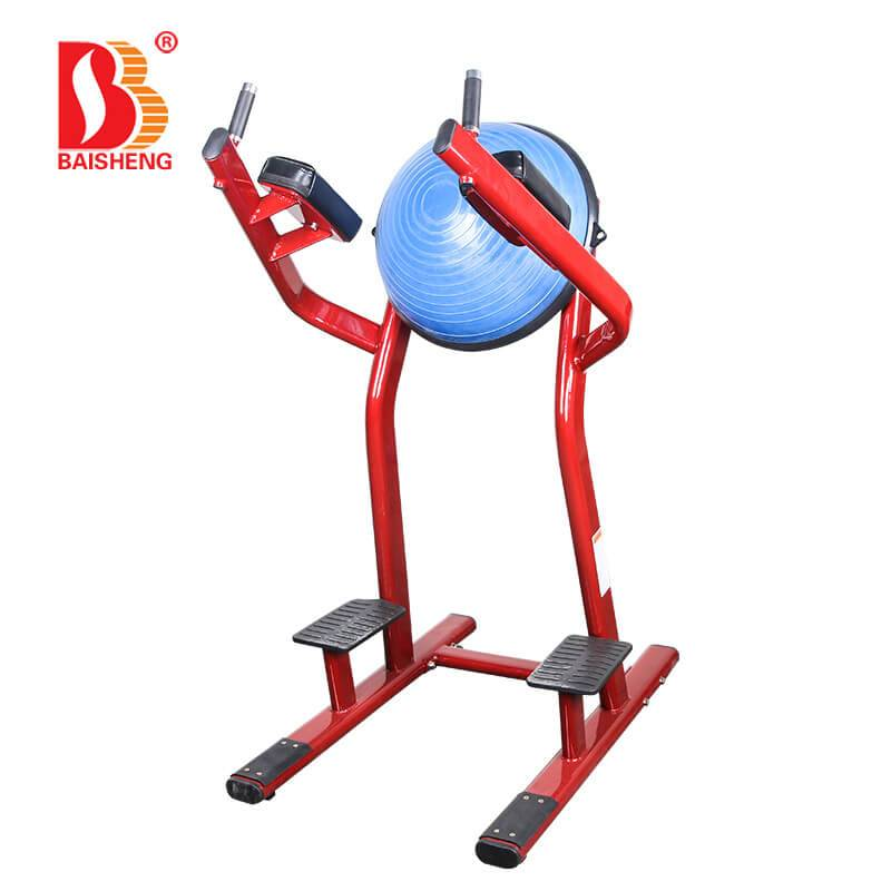 Cheapest Factory Chest Workout Machines - Leg Raise BS-ANS-3043 – Baisheng