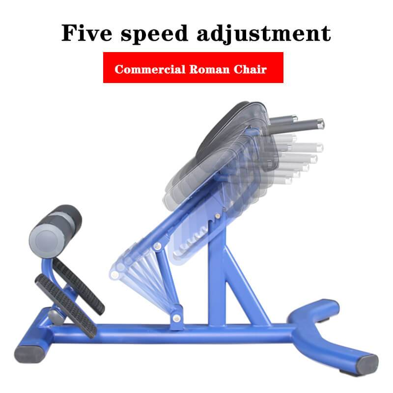 Online Exporter Adjustable Dedcline Bench -  Commercial Fitness Equipment Roman Chair BS-ANS-3044 – Baisheng