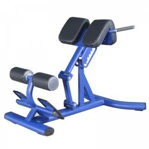 Big Discount Gym Exercise Equipment -  Commercial Fitness Equipment Roman Chair BS-ANS-3044 – Baisheng