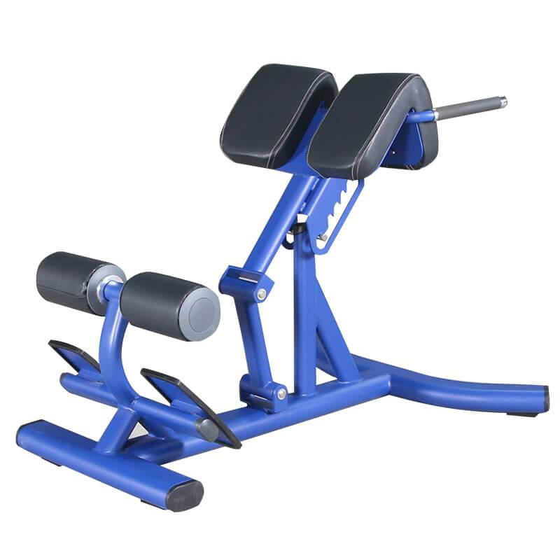 Factory wholesale Flat Bench -  Commercial Fitness Equipment Roman Chair BS-ANS-3044 – Baisheng