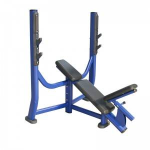 2020 Latest Design Pulldown - Olympic Incline Weight Bench BS-ANS-3028 – Baisheng