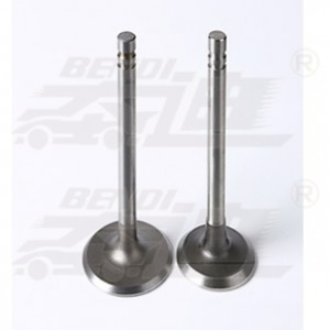 Chinese Professional Diesel Engine Valves - G.M.C – Bendi