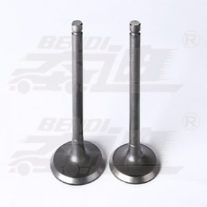 Wholesale Inlet Exhaust Valve - Daihatsu – Bendi