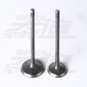 Hot sale Factory Titanium Exhaust Valves - Daewoo – Bendi